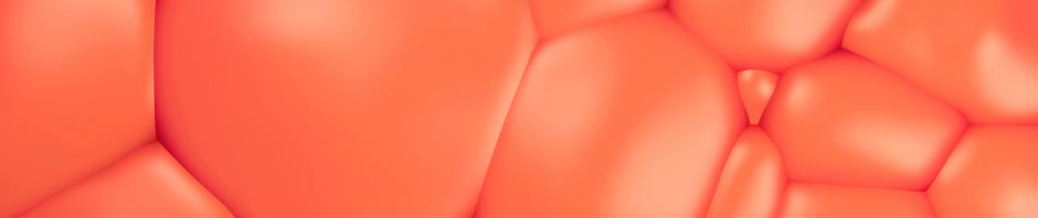vizualizacija, kas attelo tauku sunas